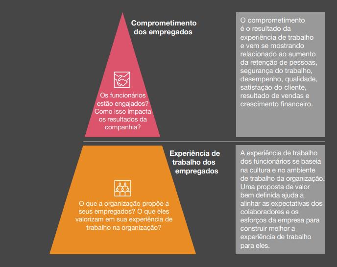 importancia-cultura-organizacional